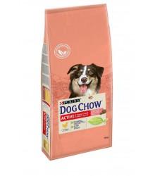 Dog Chow (Дог Чао) Adult Active Chicken для взрослых активных собак с курицей.