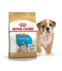 Royal Canin (Роял канин) Bulldog  Junior Корм для щенков Английского бульдога до 12 месяцев