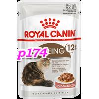 Royal Canin (Роял Канин) Ageing +12 Влажный корм для кошек старше 12 лет.