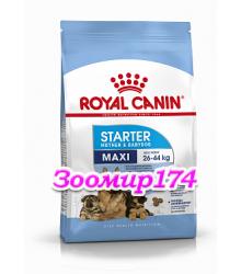 Royal Canin (Роял канин) Maxi Starter Mother & BabyDog Корм для щенков до 2-х месяцев, беременных и кормящих сук