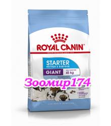 Royal Canin (Роял канин) Giant Starter Mother & BabyDog   Корм для щенков до 2-х месяцев, беременных и кормящих сук