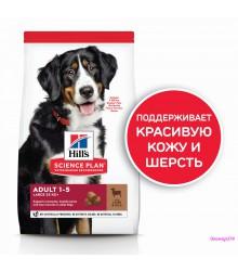 Hill's Science Plan Advanced Fitness корм для собак крупных пород от 1 до 5 лет ягненок с рисом.
