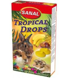 САНАЛ для грызунов дропсы Тропические Фрукты 45гр