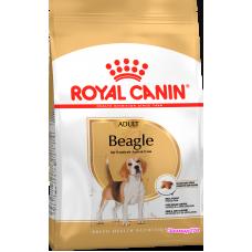 Royal Canin (Роял канин) Beagle Adult для собак породы Бигль