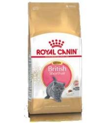 Royal Canin (Роял Канин)  Kitten British Shorthair Корм для Британских короткошерстных котят с 4 до 12 месяцев