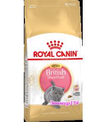 Роял канин (Роял Канин) Kitten British Shorthair Корм для Британских короткошерстных котят с 4 до 12 месяцев