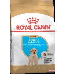 Royal Canin (Роял канин) Labrador Retriever junior  Корм для щенков Лабрадора до 15 месяцев