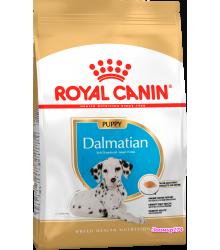 Royal Canin (Роял канин) Dalmatian  Junior Корм для щенков Далматина до 15 месяцев