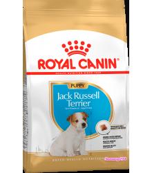 Royal Canin (Роял канин) Jack Russell Terrier Junior Корм для щенков породы джек-рассел-терьер в возрасте до 10 месяцев