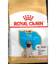 Royal Canin (Роял канин) Pug Puppy Корм для щенков породы мопс в возрасте до 10 месяцев