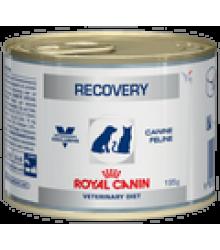 Royal Canin (Роял Канин)   RECOVERY диета для собак и кошек в период анорексии, выздоровления (банка)