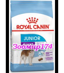 Royal Canin (Роял канин) Giant JUNIOR Корм для щенков с 8 до 18/24 месяцев